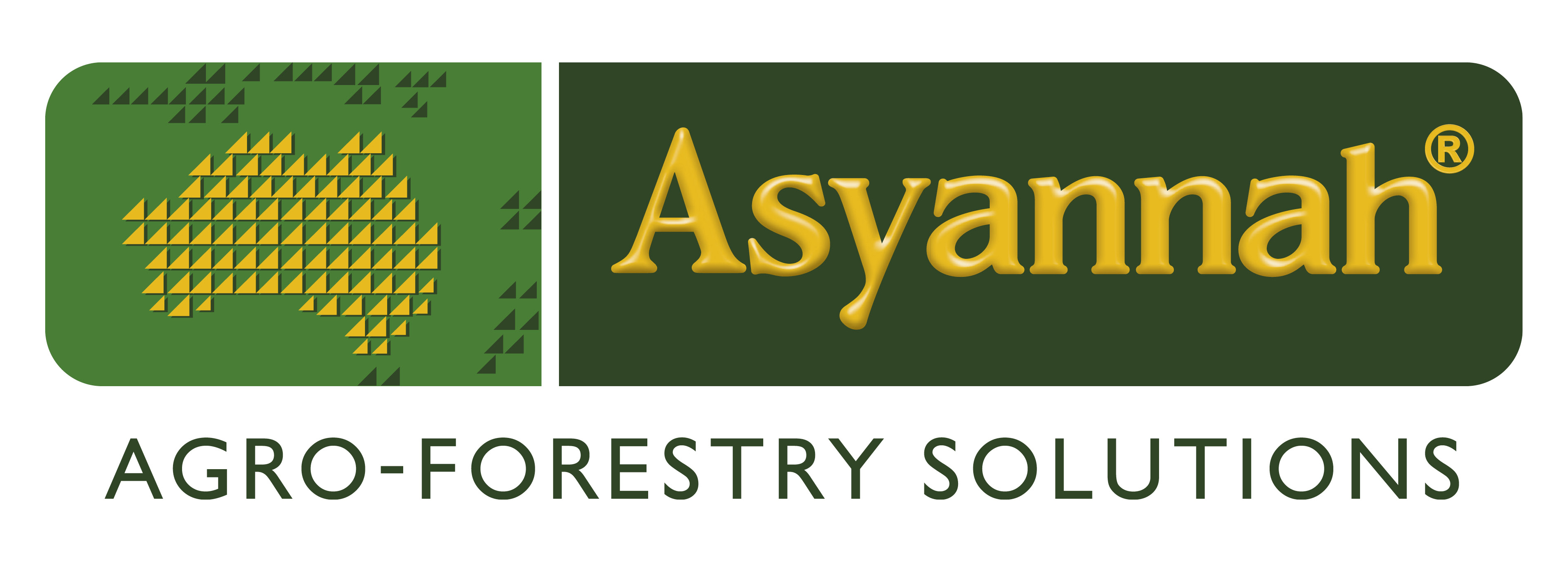 ASYANNAH W BORDER